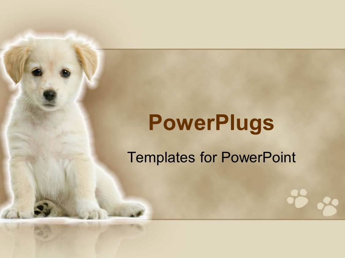 5000 Grooming Dog Powerpoint Templates W Grooming Dog Themed