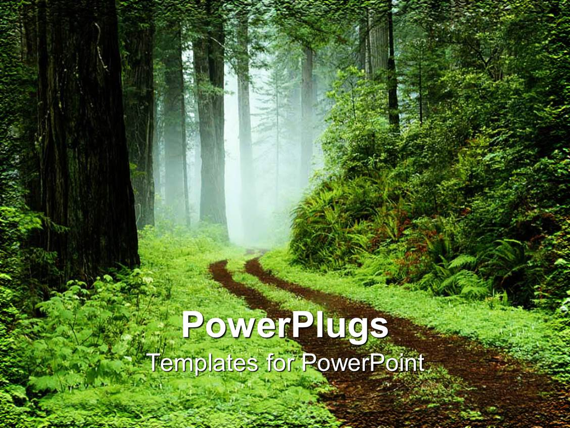 Top Forest PowerPoint Templates, Backgrounds, Slides and PPT Themes.