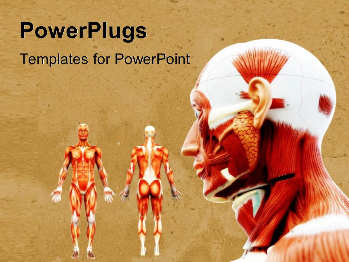 5000+ Muscle PowerPoint Templates w/ Muscle-Themed Backgrounds