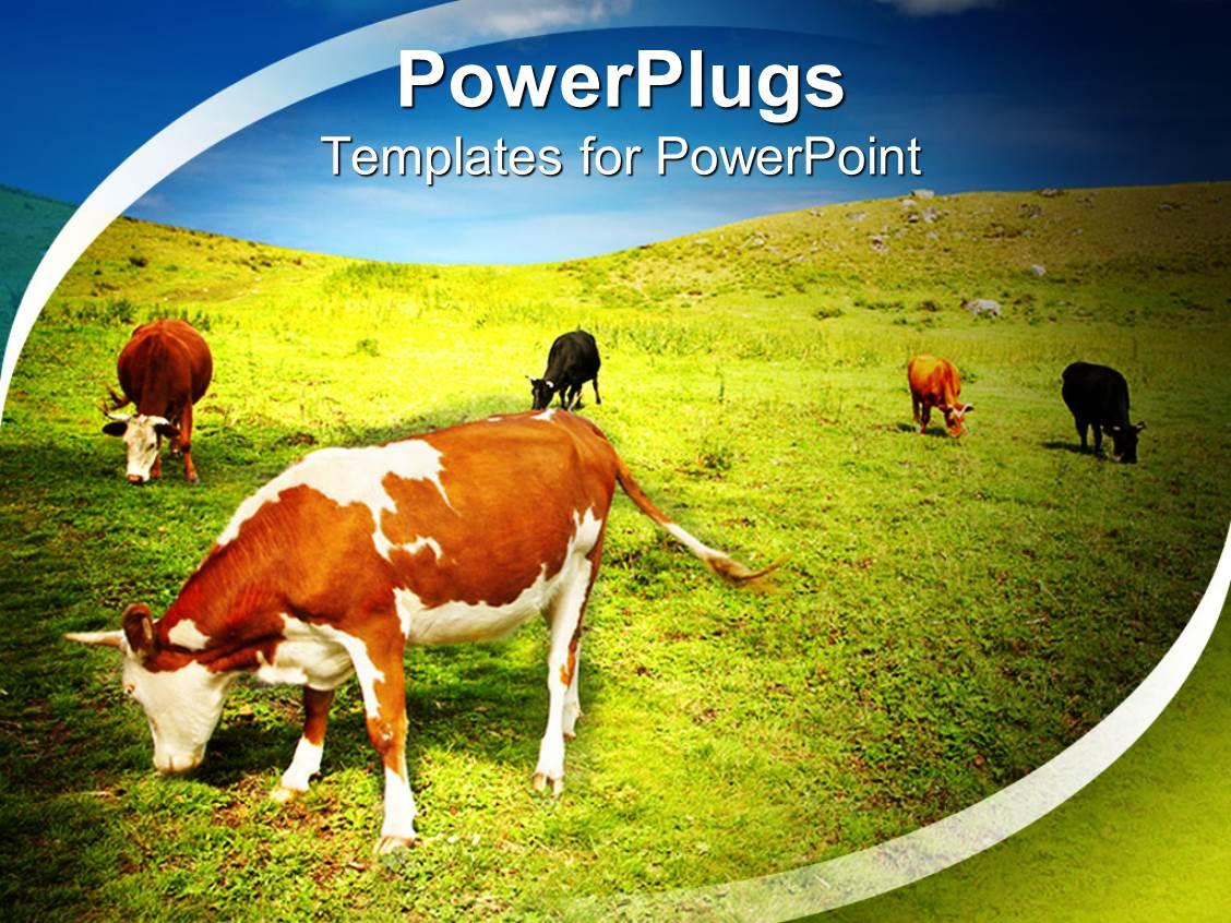 5000 farm powerpoint templates w farm themed backgrounds elegant ppt theme enhanced with natural beauty with farm animals toneelgroepblik Gallery