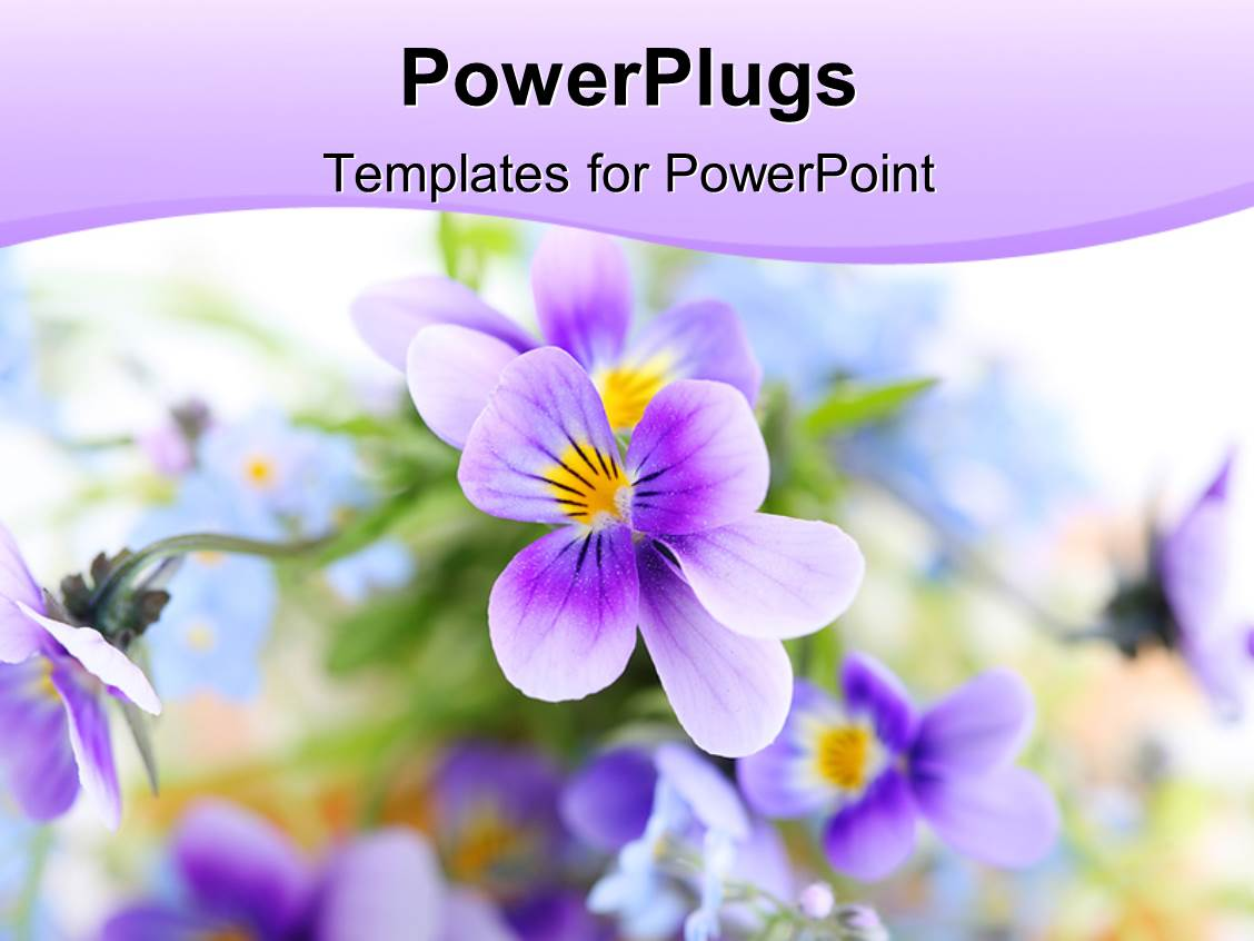Floral Border PowerPoint Templates W Floral BorderThemed - Best of flower powerpoint background concept