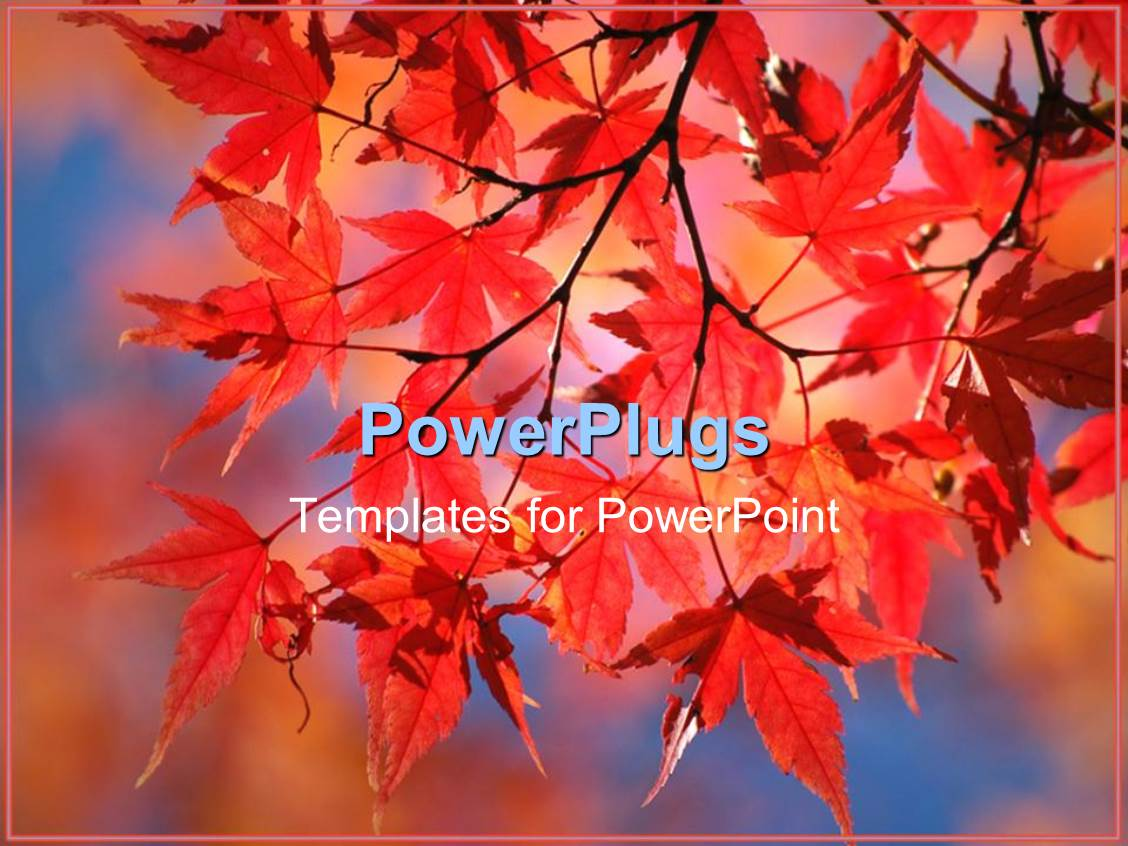 5000 japan powerpoint templates w japan themed backgrounds ppt theme enhanced with a number of leaves in the fall with colorful background toneelgroepblik Image collections