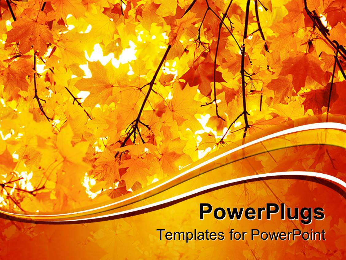 Powerpoint template a number of yellow leaves during the fall powerpoint template displaying a number of yellow leaves during the fall season toneelgroepblik Gallery