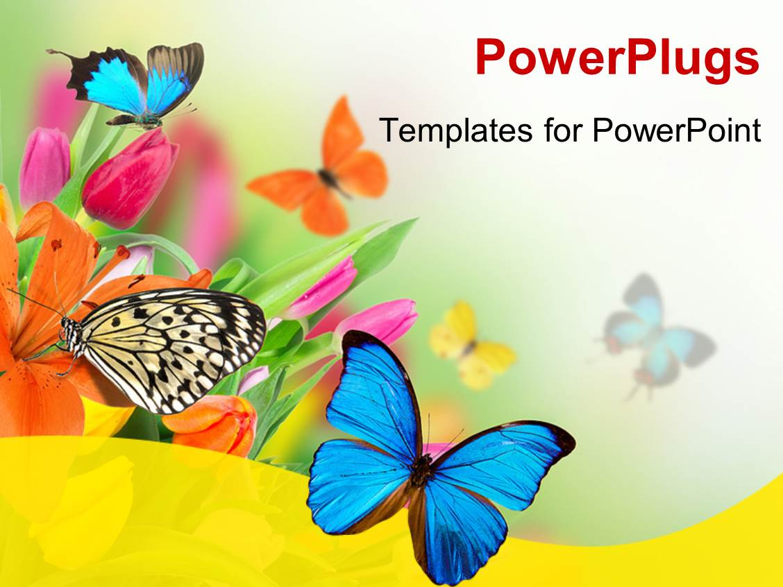 Top spring powerpoint templates backgrounds slides and ppt themes audience pleasing presentation theme featuring spring flowers with exotic butterflies template size toneelgroepblik Images