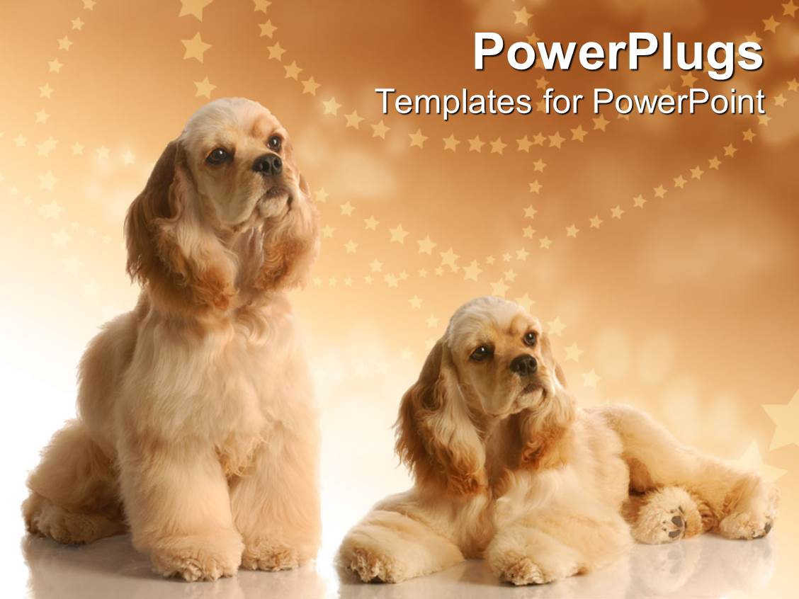 5000+ Grooming Dog PowerPoint Templates w/ Grooming Dog-Themed ...
