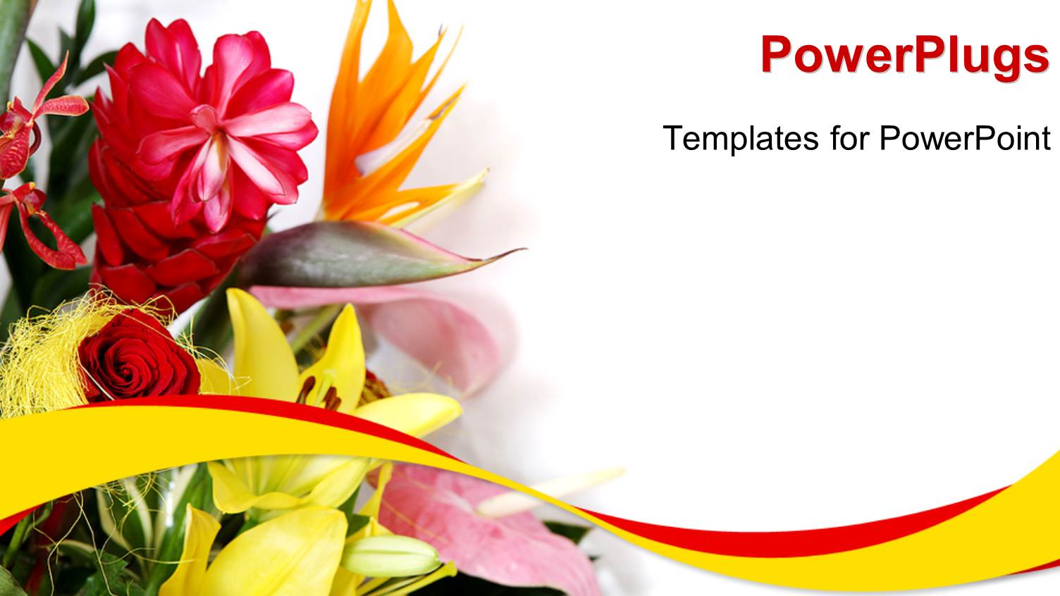 Blank background for greeting card backgrounds for powerpoint.