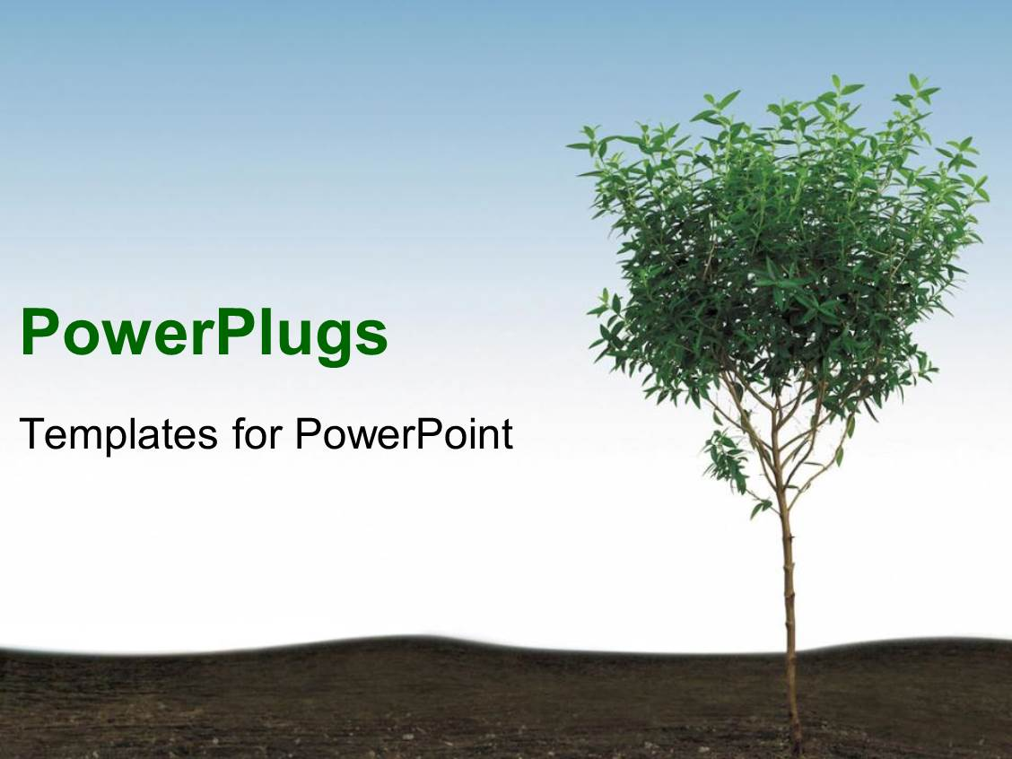 Powerpoint template trees surrounding clear aquamarine pond calm amazing presentation consisting of young tree in soil blue sky toneelgroepblik Images