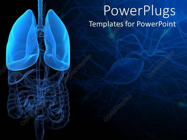 Powerpoint template 3d representation of lungs and human anatomy powerpoint template displaying 3d representation of lungs and human anatomy with intestines on dark toneelgroepblik Image collections