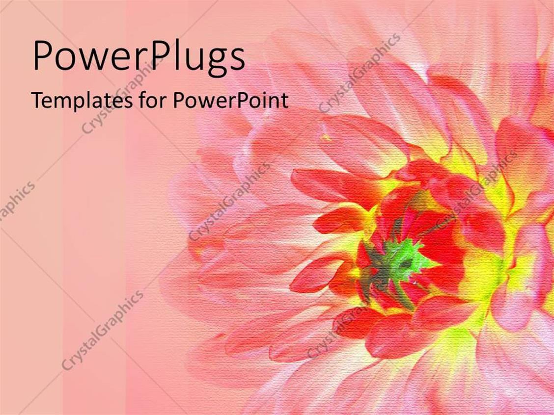 PowerPoint Template Displaying Abstract Yellow and Red Depiction of a Flower  on Pink Background