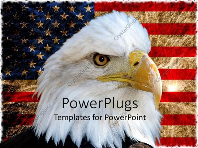 powerpoint template american bald eagle on vintage american flag 1691