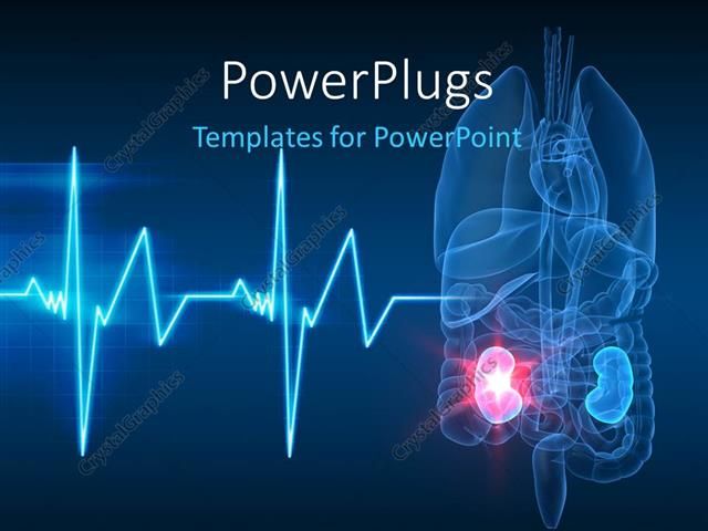 Powerpoint template anatomy of human organs with kidney failure and powerpoint template displaying anatomy of human organs with kidney failure and ecg wave in the forefront toneelgroepblik