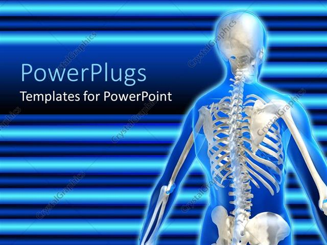 Powerpoint template anatomy of the human skeletal system on a powerpoint template displaying anatomy of the human skeletal system on a blue background toneelgroepblik Image collections