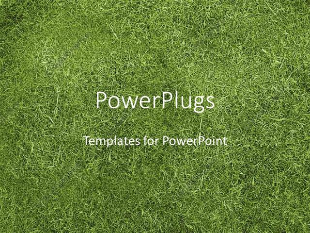 powerpoint template displaying the background full of grass with place for text