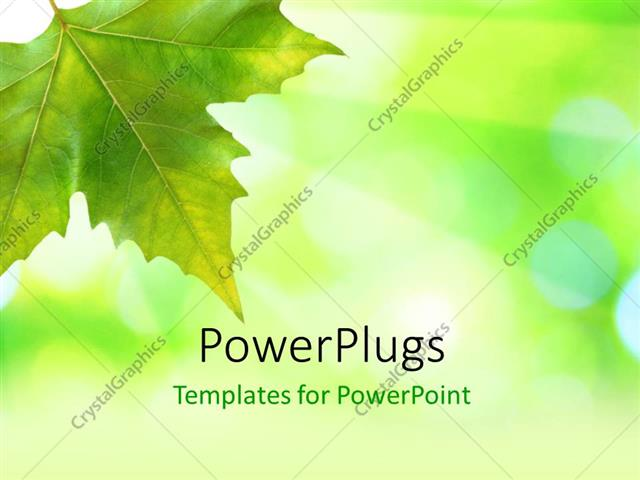 Powerpoint Template Beautiful Green Leaves With Green Background In