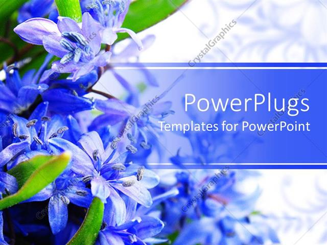 Powerpoint Template Beautiful Spring Flowers Placed On A Side And