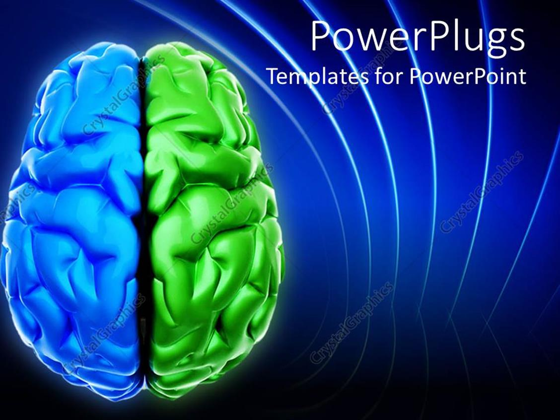 PowerPoint Template Displaying Blue and Green Brain Depiction Digital Representation of Brain with Two Different Colored Halves