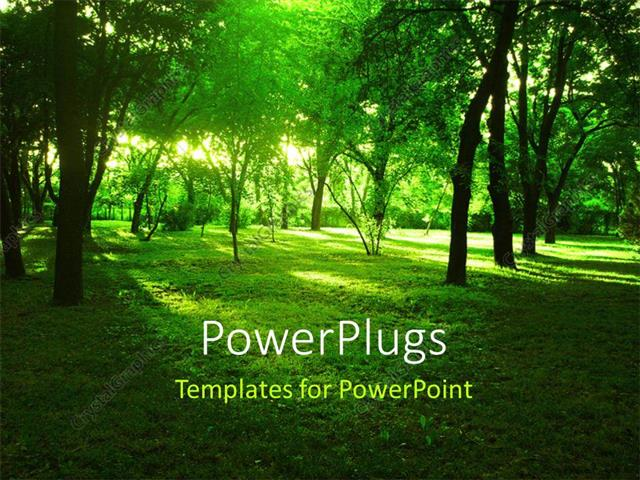 Powerpoint template bright summer forest with green grass and powerpoint template displaying bright summer forest with green grass and huge trees toneelgroepblik Image collections