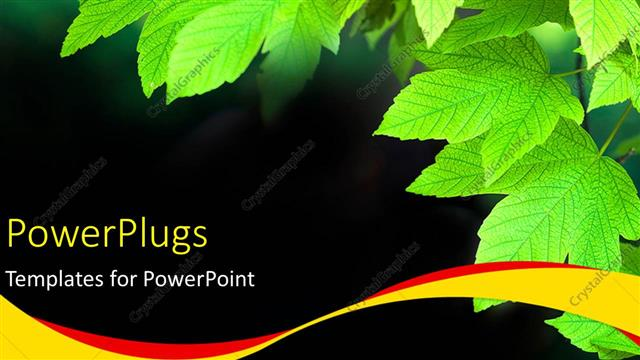 PowerPoint Template Displaying a Bunch of Green Leaves on a Black Colored Background