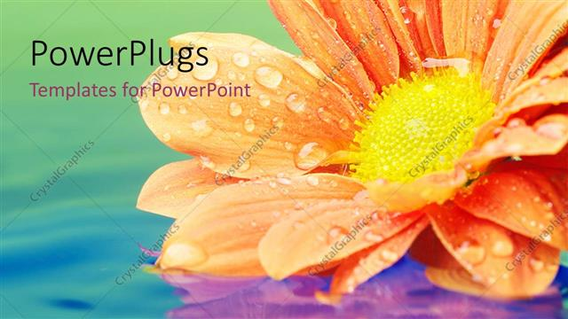 PowerPoint Template Displaying a Beautiful Flower in a Lake