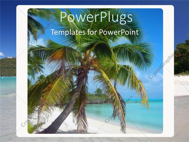 Powerpoint template coconut palm tree on beach in box with ocean powerpoint template displaying coconut palm tree on beach in box with ocean landscape vacation toneelgroepblik Gallery