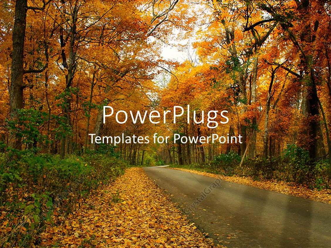 PowerPoint Template Displaying Country Road Through Forest Trees in Autumn Setting with Fall Leaves on the Ground