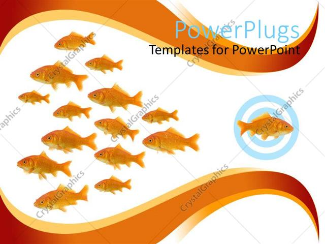 PowerPoint Template Displaying Dare to be Different Metaphor with One Goldfish Swimming in Different Direction from other Fish