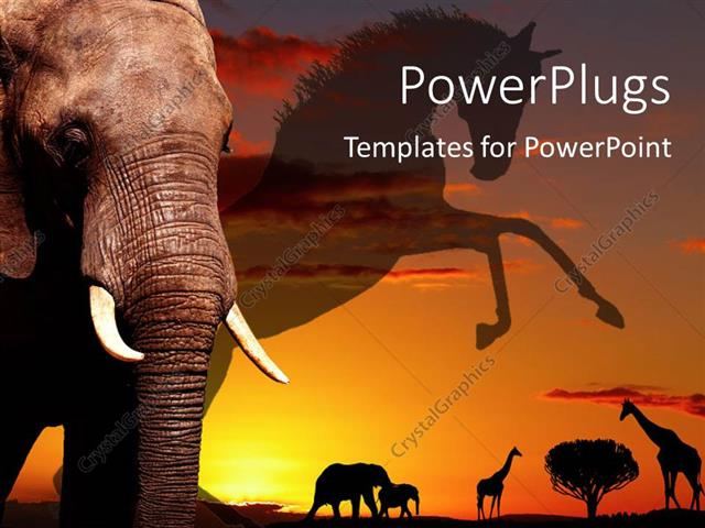 Powerpoint Template An Elephant With Jungle Life In The Background