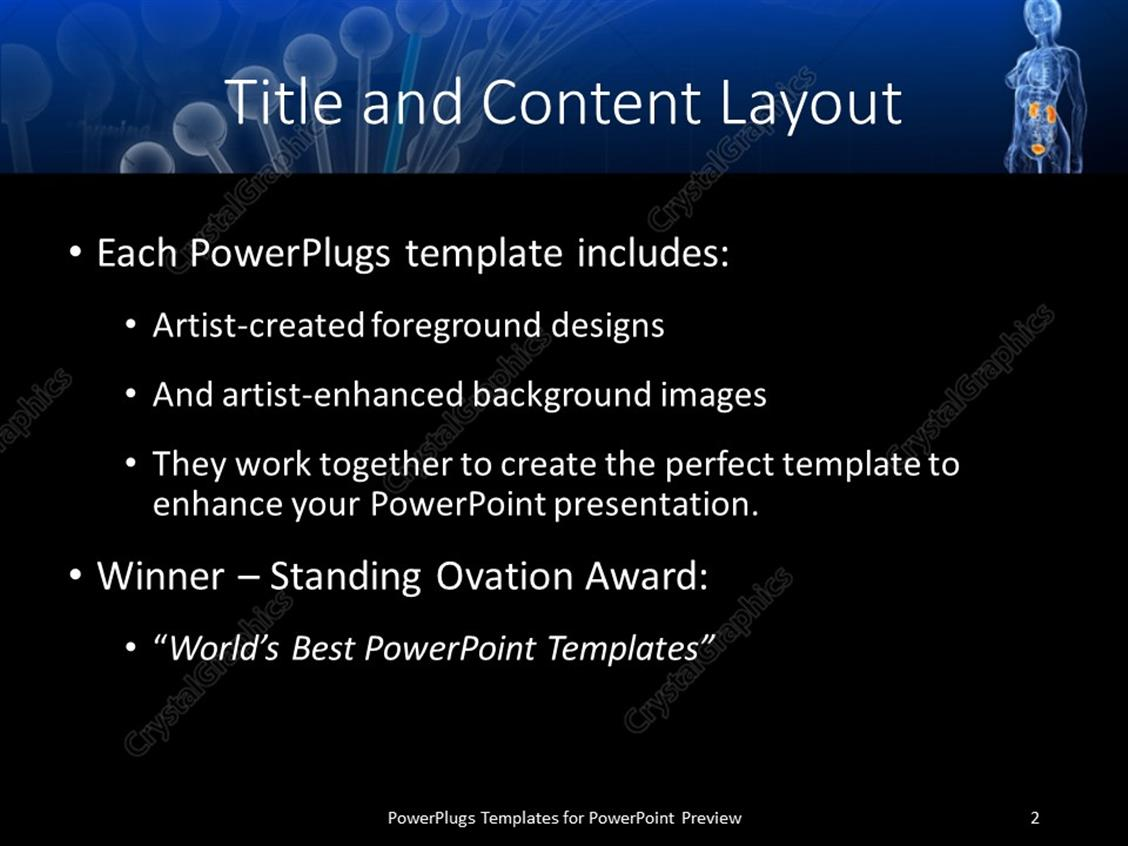 Powerpoint template female anatomy with highlighted urinary system powerpoint products templates secure toneelgroepblik Image collections