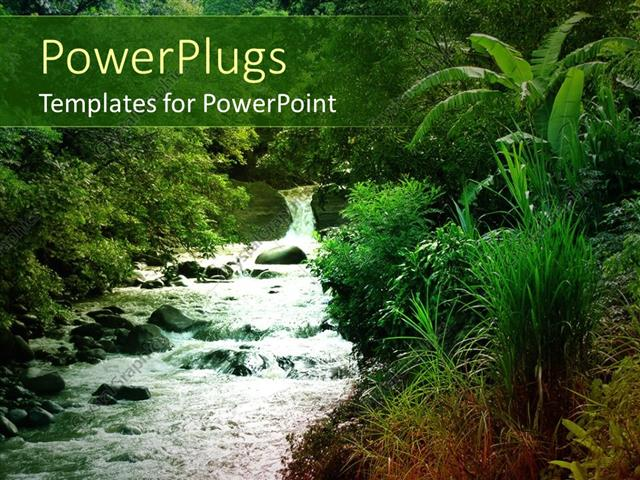 Powerpoint template flowing stream with green natural vegetation powerpoint template displaying flowing stream with green natural vegetation toneelgroepblik Images