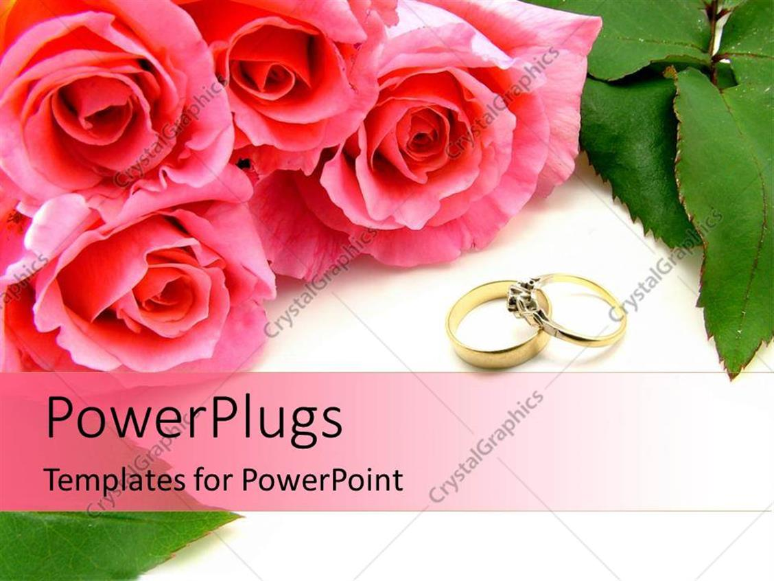 PowerPoint Template: Four pink roses and two wedding rings on a ...