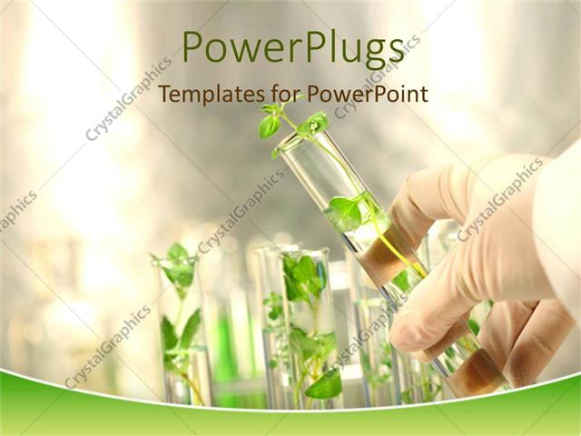 Powerpoint template gloved hand holding a small plant in a test powerpoint template displaying gloved hand holding a small plant in a test tube against a background of toneelgroepblik Images