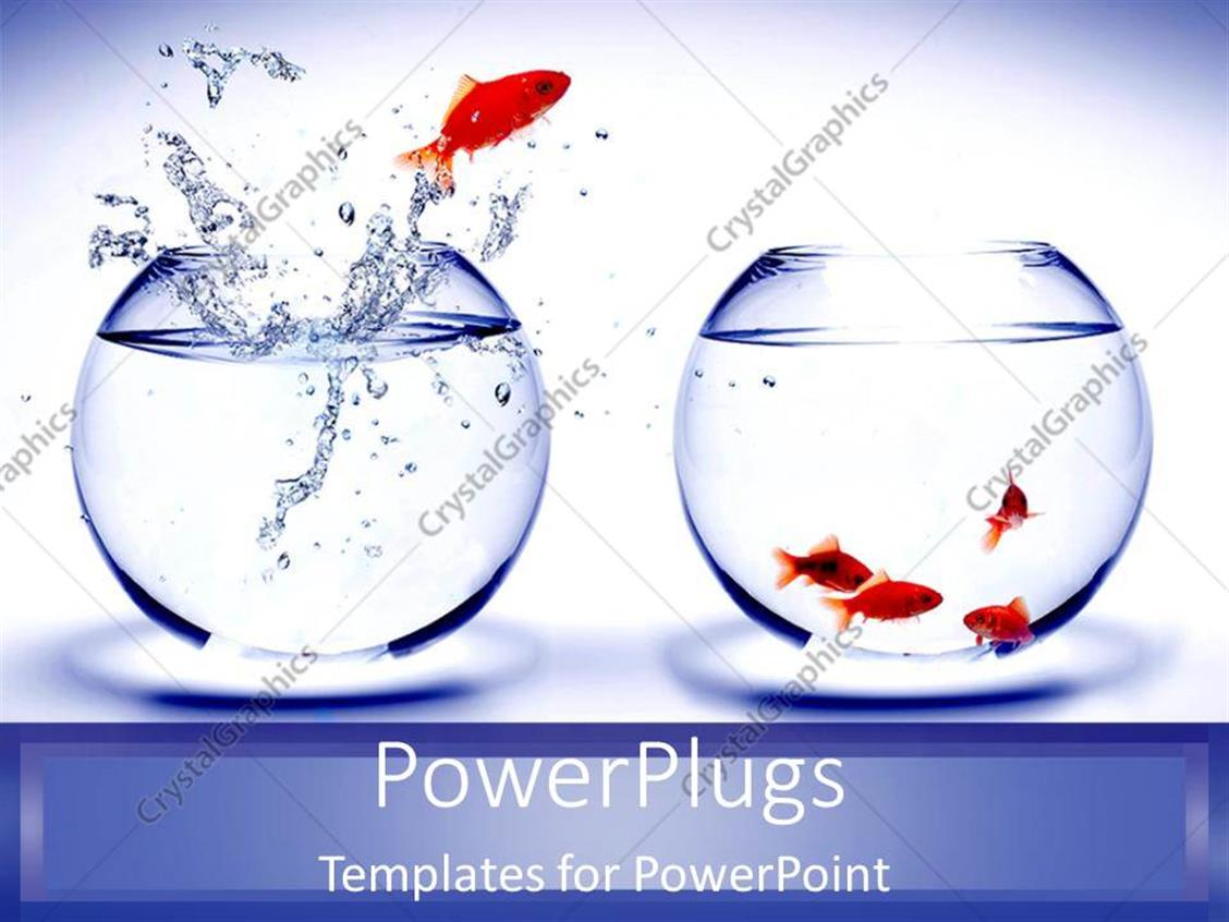PowerPoint Template Displaying Gold Fish Jumping Out of Blue Fish Tank to Join Team as a Metaphor