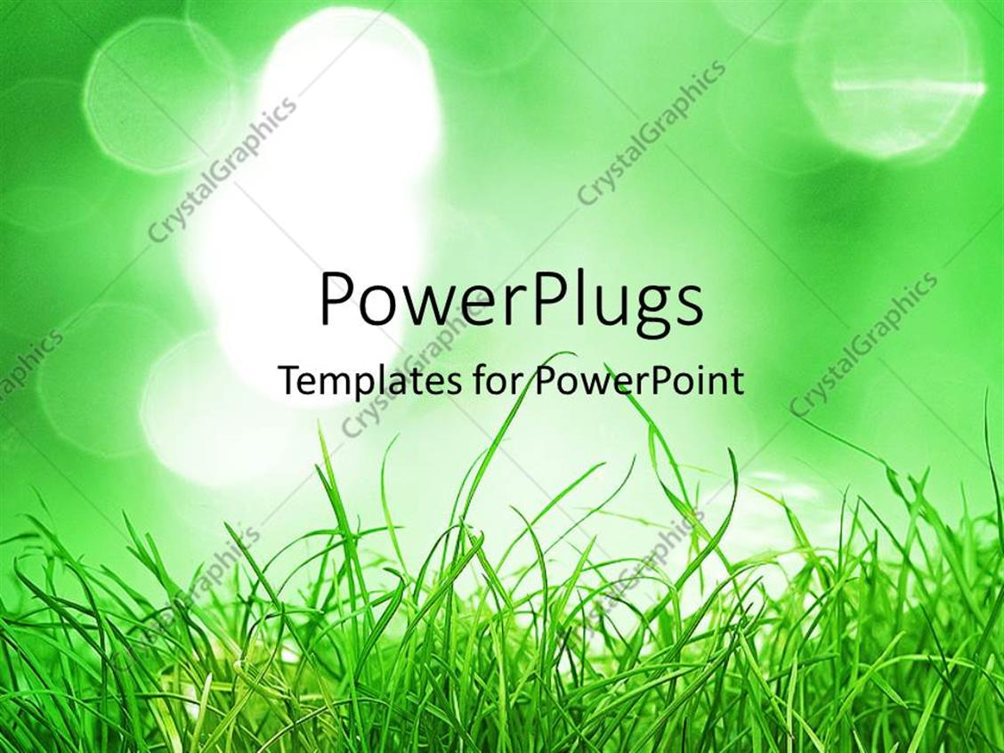 PowerPoint Template Displaying Green Grass Depicting Nature in the Background