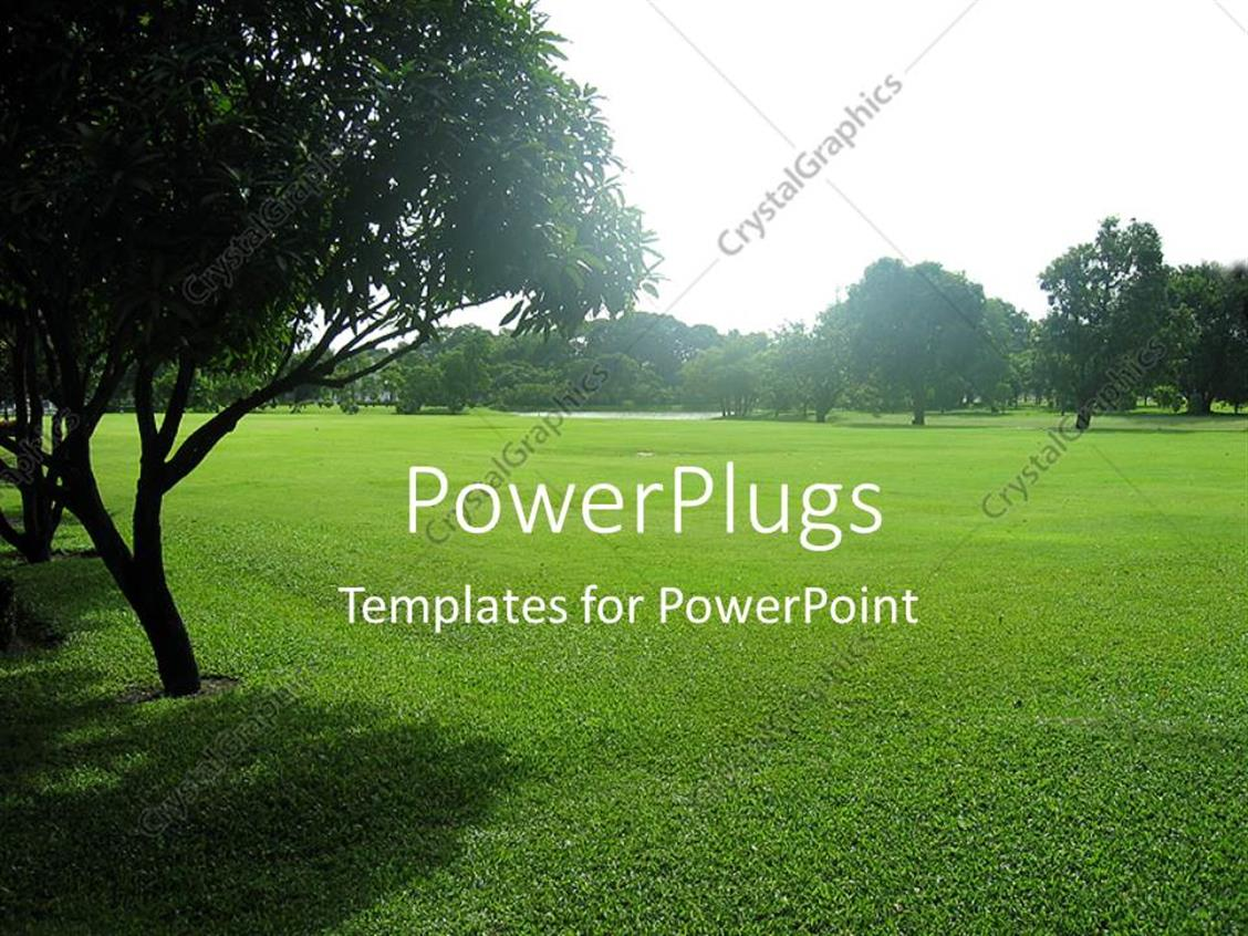 PowerPoint Template Displaying Green Grass and Trees in the Park in a Sunny Summer Day
