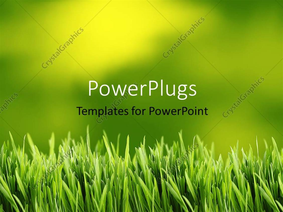 PowerPoint Template Displaying Green and Yellow Grass Background