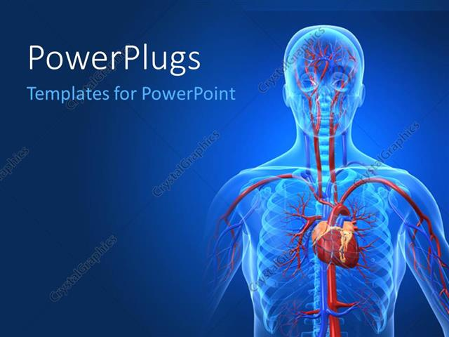 PowerPoint Template: a human anatomy with bluish background (6483)