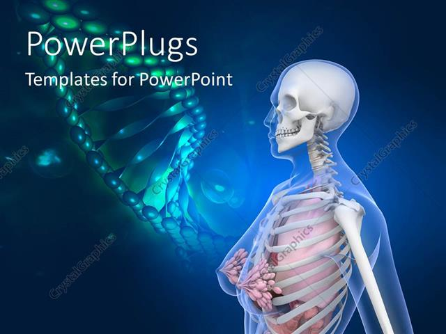 anatomy ppt templates free download - powerpoint template human anatomy with dna 11969