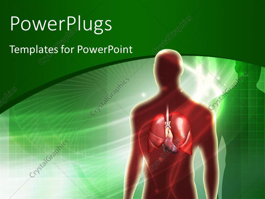 Powerpoint Template Human Anatomy With Lungs Over Green Background