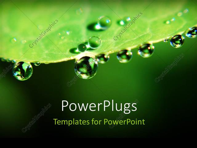 PowerPoint Template Displaying a Leaf with a Number of Water Droplets