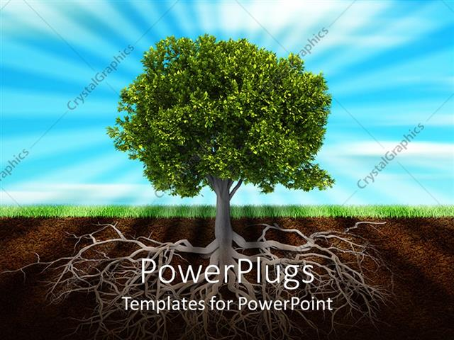 Powerpoint template life roots and green trees nature green grass powerpoint template displaying life roots and green trees nature green grass sunshine light behind tree toneelgroepblik Images