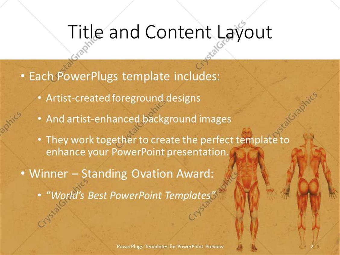Powerpoint template male muscles on the human body in anatomy on powerpoint products templates secure alramifo Choice Image