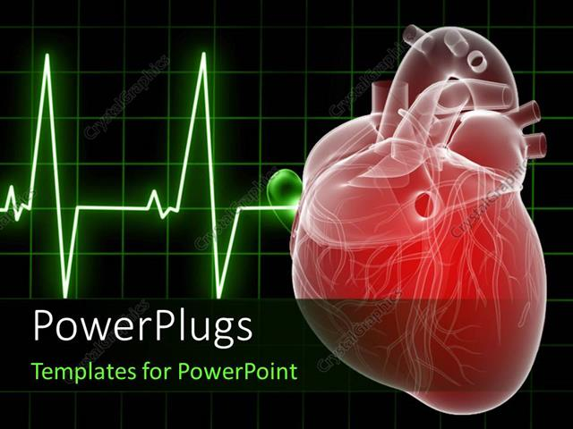 Powerpoint template medical background with anatomy for Cardiac ppt template
