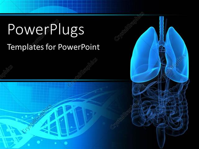 Powerpoint Template Medical Background With Anatomy