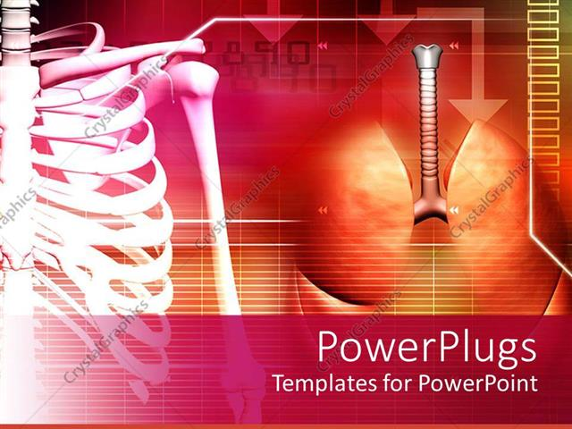 Powerpoint template medical theme with human spine and lungs on powerpoint template displaying medical theme with human spine and lungs on abstract background toneelgroepblik Image collections