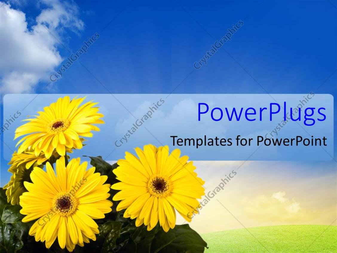 PowerPoint Template Displaying a Number of Flowers with Leaves and Bluish Background