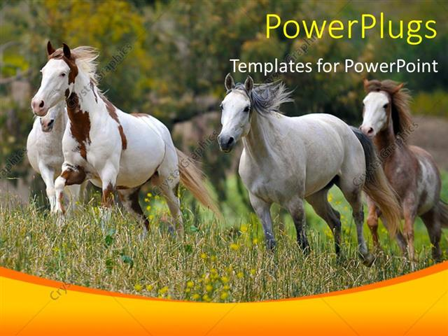Powerpoint Template A Number Of Horses On The Run 31319