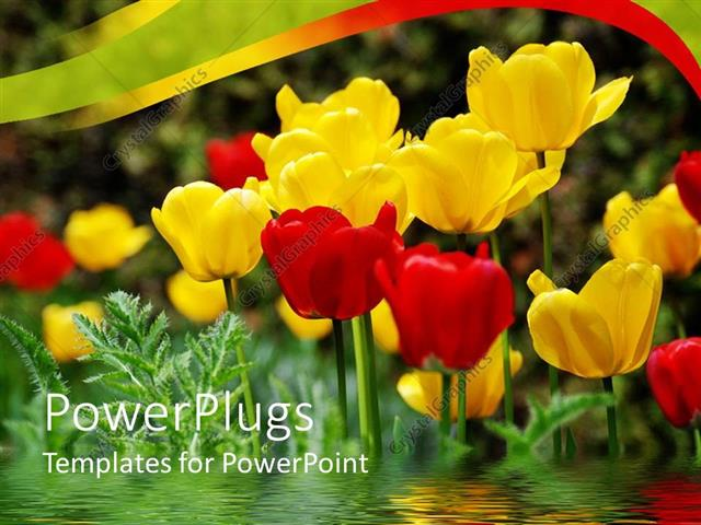 PowerPoint Template Displaying a Number of Multicolored Flowers with Greenish Background