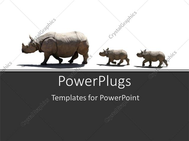 powerpoint template a number of rhinoceros in a line 18827