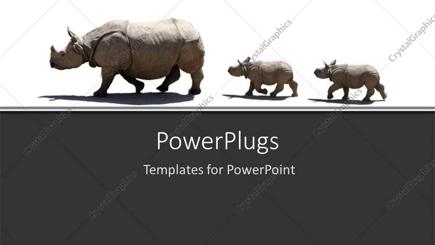 PowerPoint Template Displaying a Number of Rhinoceros in a Line