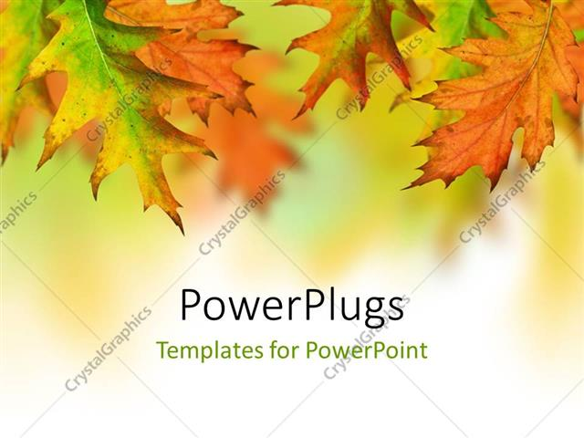 Powerpoint template orange yellow green autumn leaves with space powerpoint template displaying orange yellow green autumn leaves with space for text toneelgroepblik Images